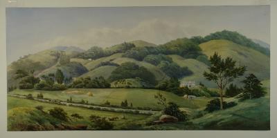Painting; Chingford Estate, Dunedin